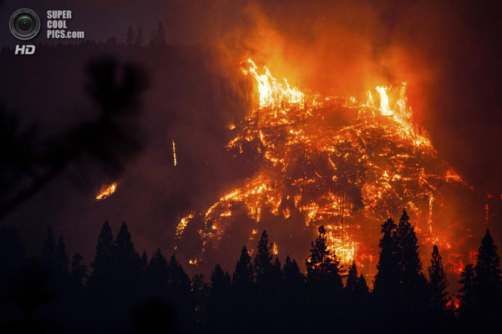 США. Бак-Медоус, Калифорния. 24 августа. Лесной пожар «Rim Fire». (REUTERS/Max Whittaker)