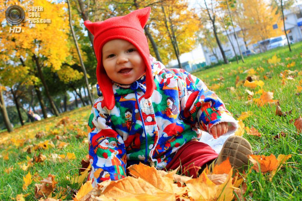 Ранняя осень. (Kuzmenko Kristina)