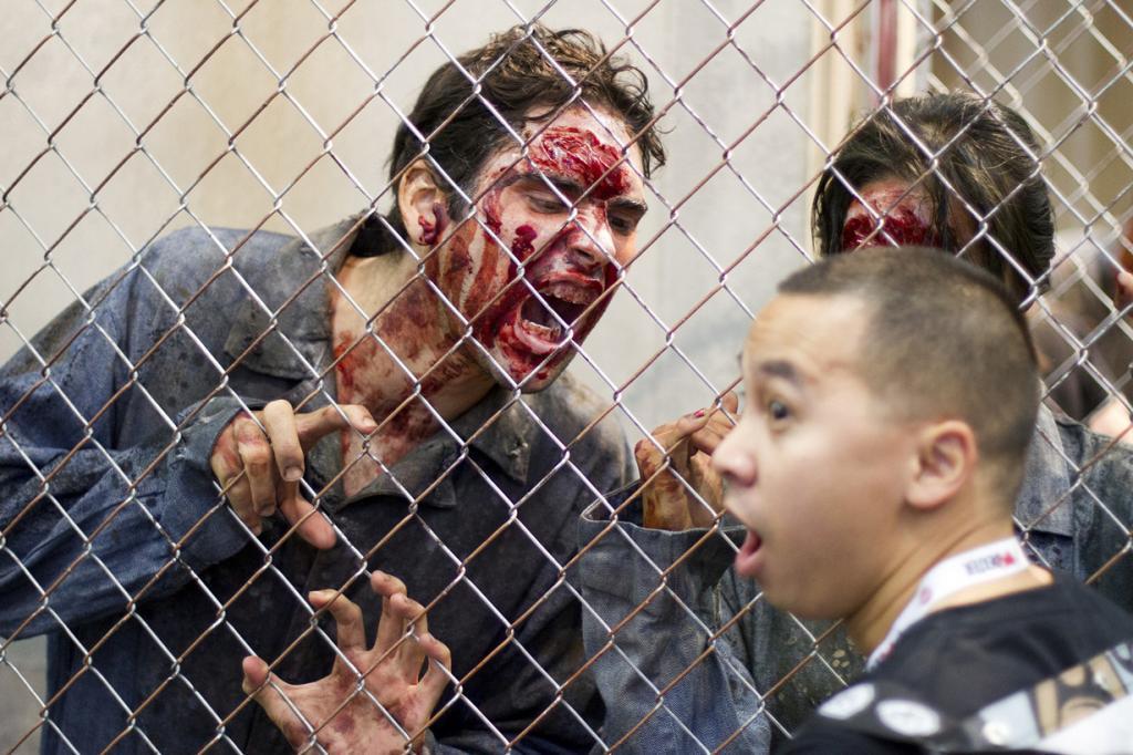 Зомби овладели человечеством (14 фото)