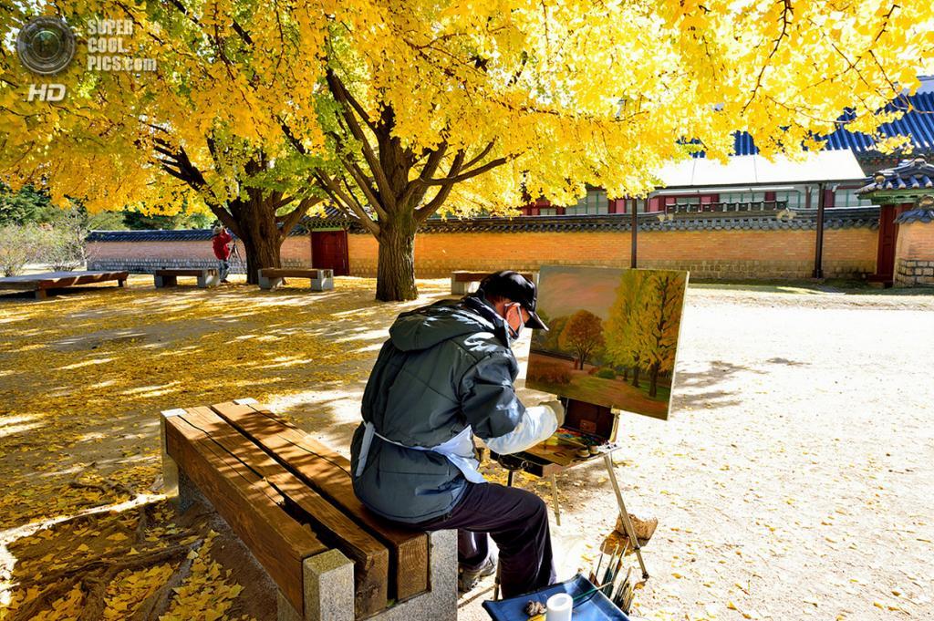 Ранняя осень. (Young Sung Bae)