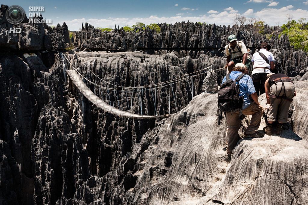 Мадагаскар. Заповедник Цинжи-дю-Бемараха. (Ralph Kränzlein)