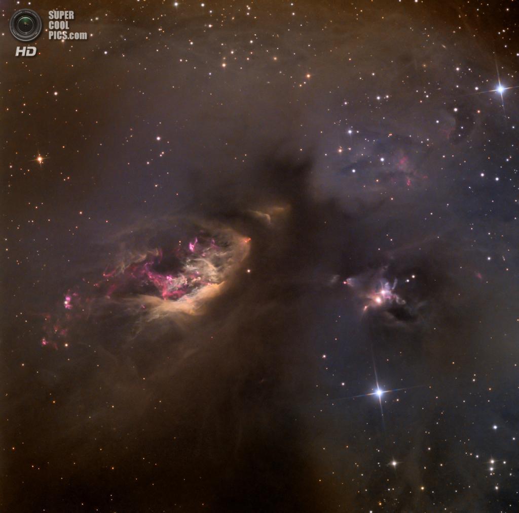 «Небесное импасто: sh2–239». Победитель в номинации «Глубокий космос». (Adam Block/Astronomy Photographer of the Year)