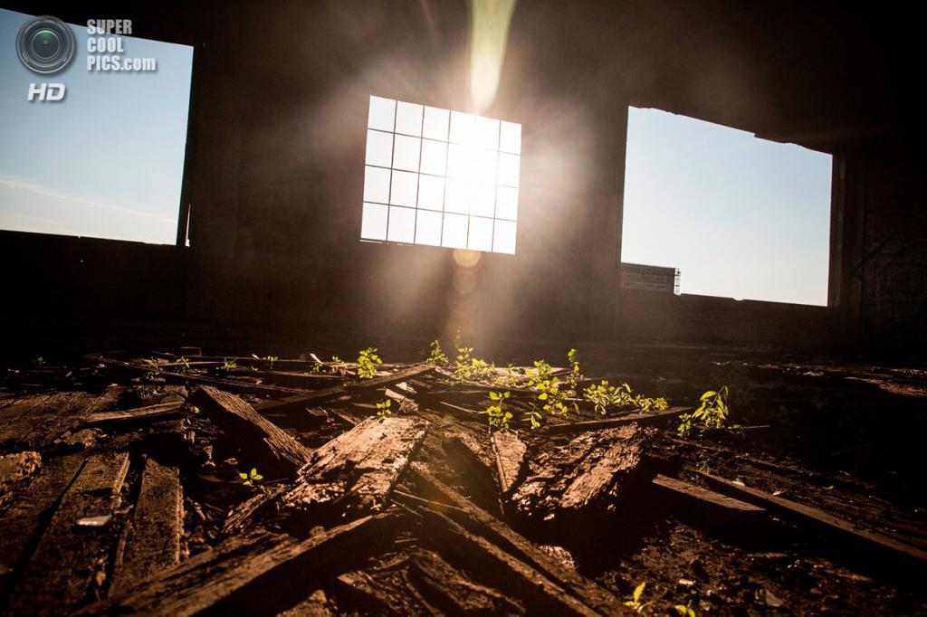 США. Детройт, Мичиган. 4 сентября. (Andrew Burton/AFP/Getty Images)