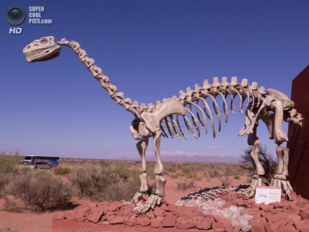 Аргентина. Ла-Риоха. Скелет лессемзавра на въезде в национальный парк Талампайа. (Rita Willaert)