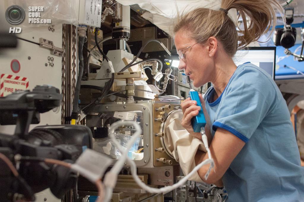 Карен Найберг проводит опыты с микрогравитацией в лабораторном модуле «Дестини». (NASA)