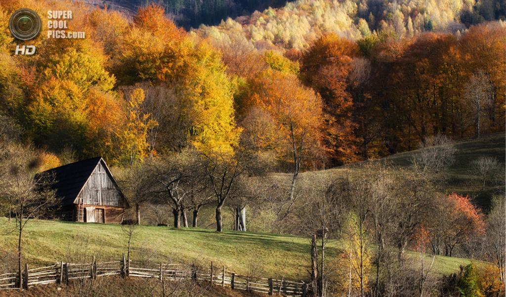 Ранняя осень. (Adi Barboiu)