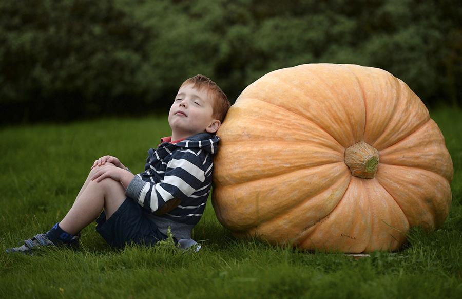 Осеннее настроение (28 фото, продолжение)