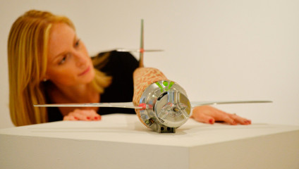 Британский поп-арт в галерее Christie's (12 фото)