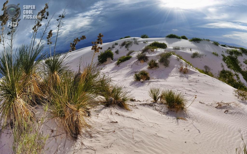 США. Нью-Мексико. Государственный заповедник Белые пески. (BongoInc)