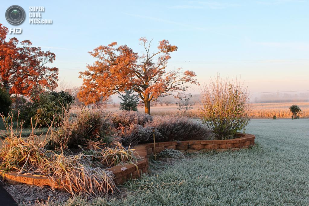 Осенние заморозки. (marylea)
