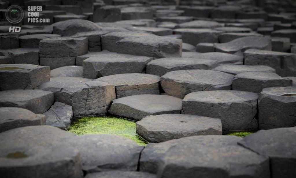 Северная Ирландия. Дорога гигантов. (Richard Paas)