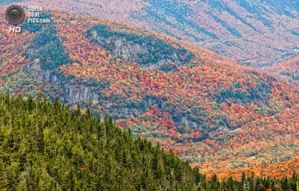 США. Кроуфорд-Нотч, Нью-Гэмпшир. 5 октября. Горный лес, вид с вершины горы Кроуфорд высотой 950 м. (Ken MacGray)