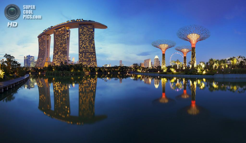 Сингапур. Парковый комплекс Gardens by the Bay. (Maxwell Campbell)