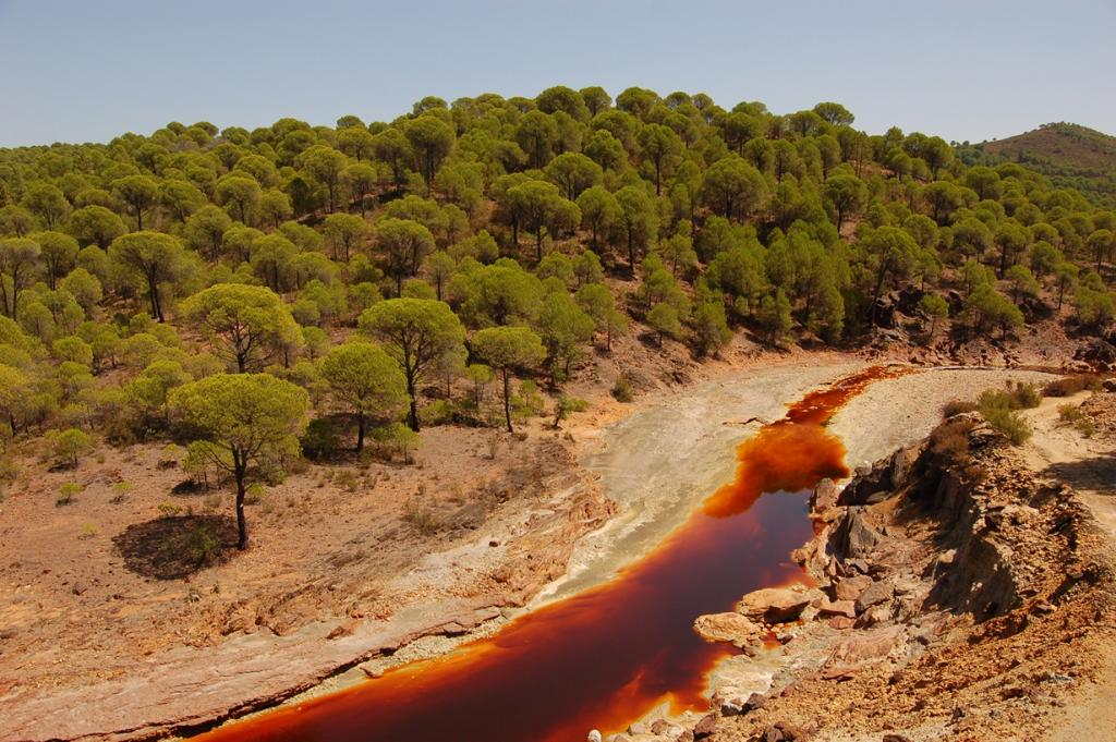 Кислотная река Тинто (7 фото)