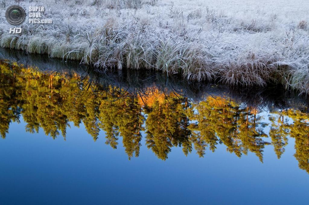 Осенние заморозки. (Fredric Dacke)