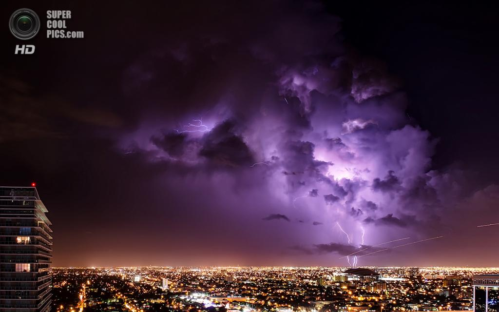 США. Майами, Флорида. «Молнии Глейдс». (lostINmia)
