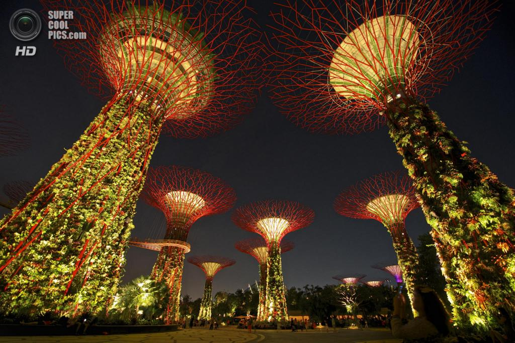 Сингапур. Парковый комплекс Gardens by the Bay. (Trevor Cole)