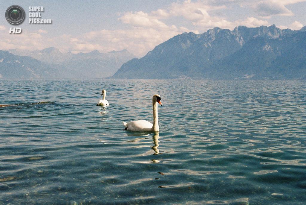 Швейцария. Женевское озеро. (Katie Harkathon)