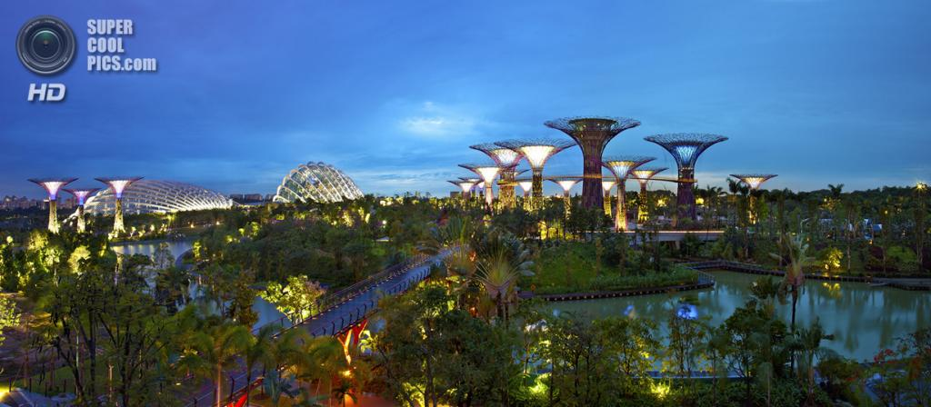 Сингапур. Парковый комплекс Gardens by the Bay. (Kenny Teo)