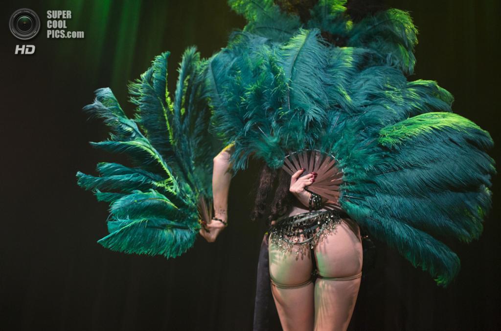 Германия. Берлин. Во время 1-го Международного берлинского фестиваля бурлеска. (AP Photo/Gero Breloer)