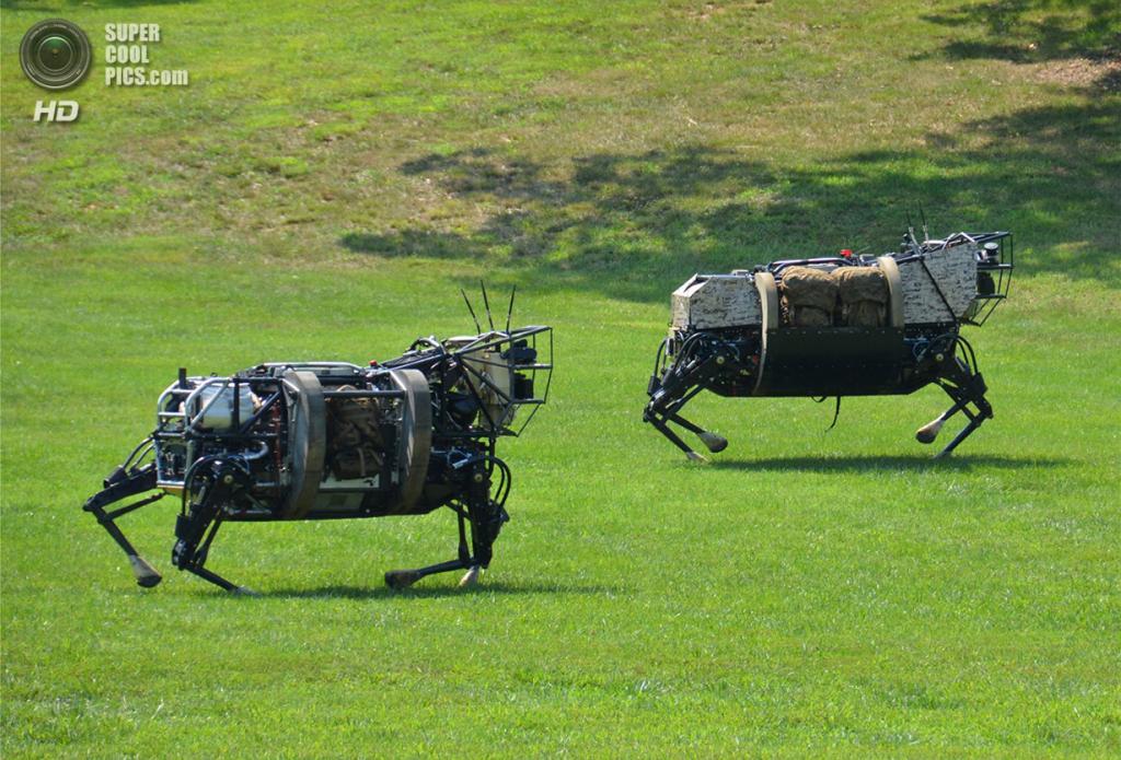 Четырёхногие роботы, разработанные по программе DARPA Legged Squad Support System (LS3). Они должны исполнять роль вьючных животных на поле боя для перемещения тяжёлых грузов. (DARPA)