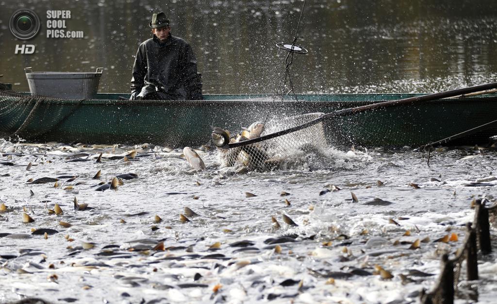 рыбалка в петринке
