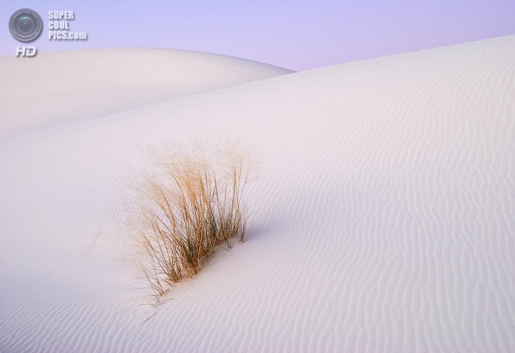 США. Нью-Мексико. Государственный заповедник Белые пески. (Marshal Hedin)