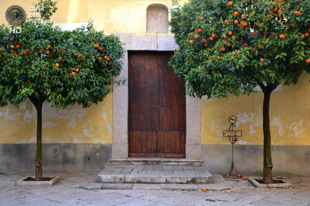 Италия. Сант'Агата-де'-Готи, Беневенто. Боковая дверь Церкви Святого Мины. (Luca Terracciano)