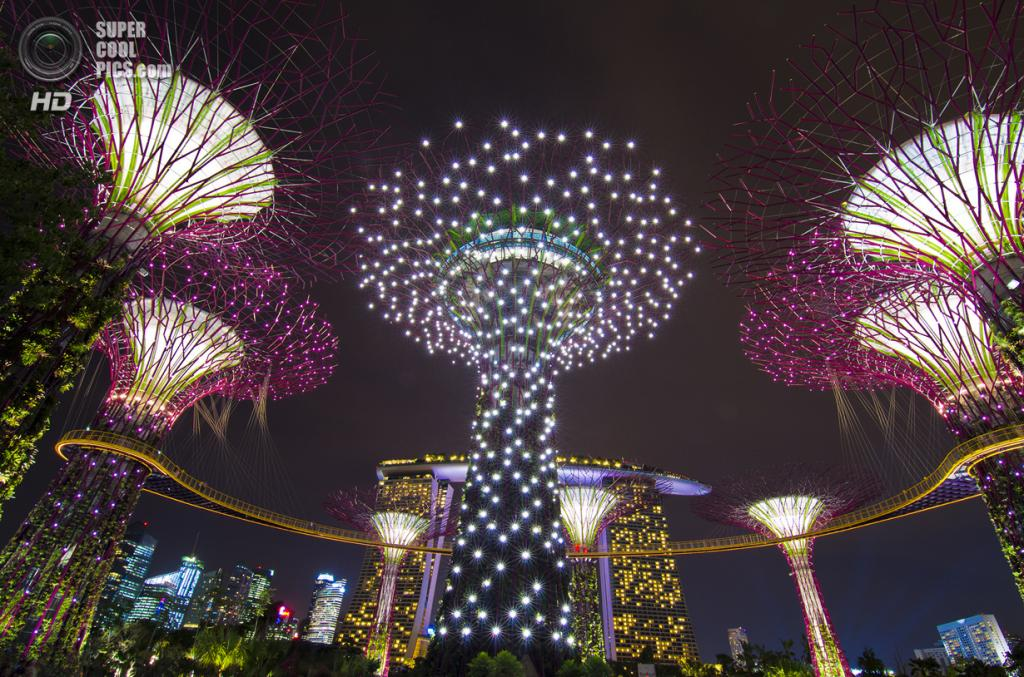 Сингапур. Парковый комплекс Gardens by the Bay. (Guowen Wang)