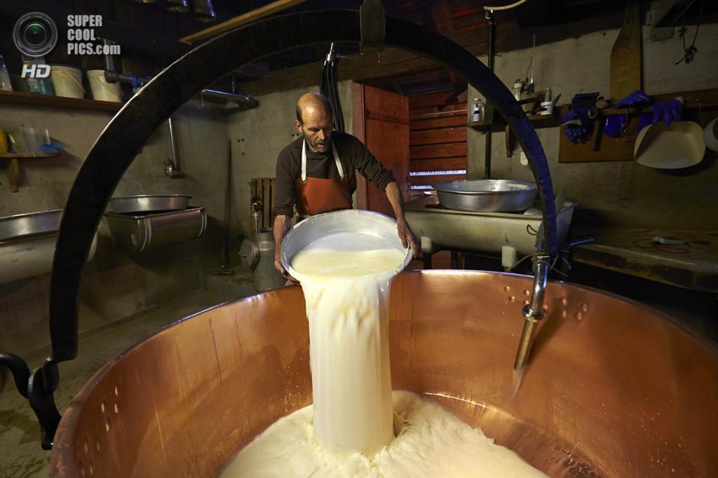 Швейцария. Грюйер. Процесс приготовления сыра. (Reuters/Denis Balibouse)