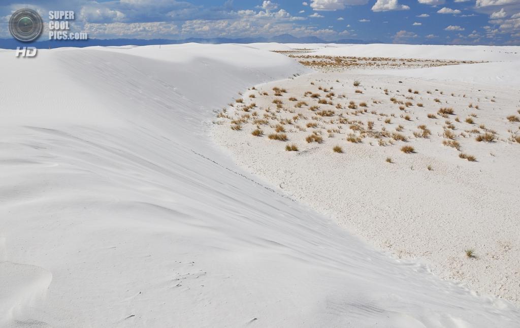 США. Нью-Мексико. Государственный заповедник Белые пески. (G. O'Graffer)