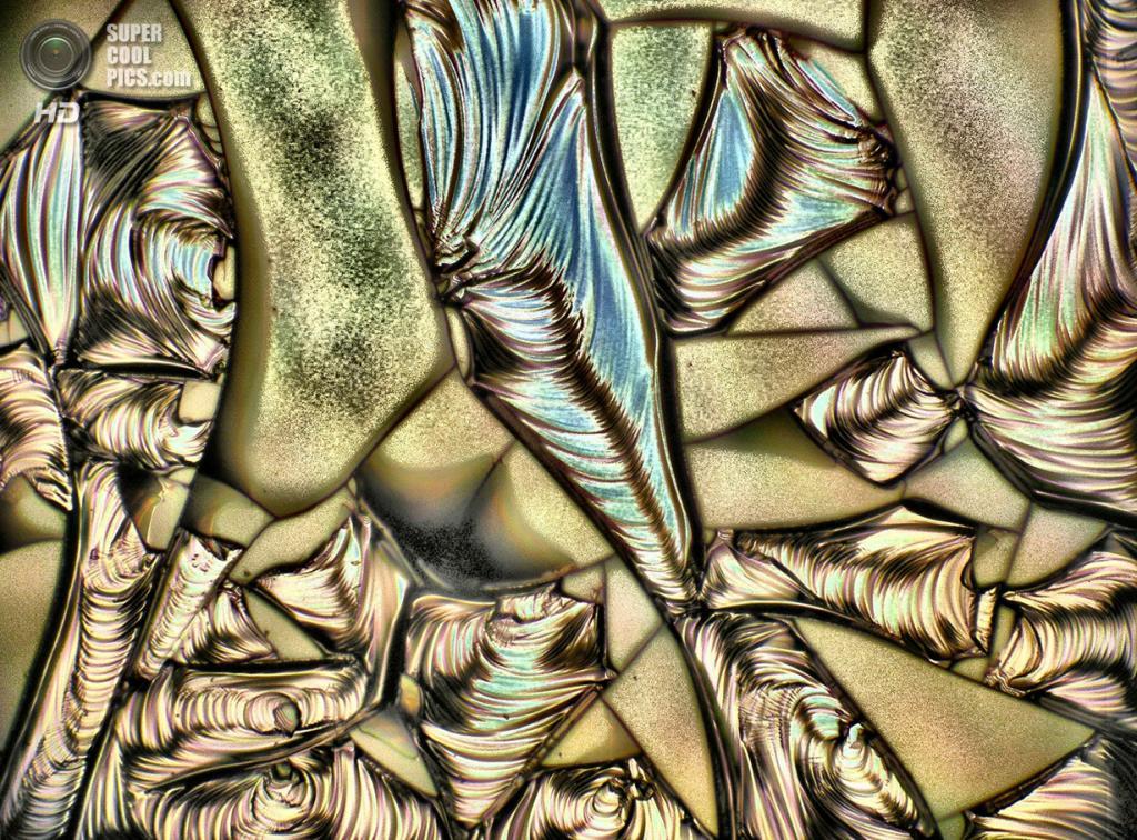 Кремниевые нанокристаллы в диоксиде кремния, 20x увеличение. (Jan Valenta and Benjamin Bruhn)