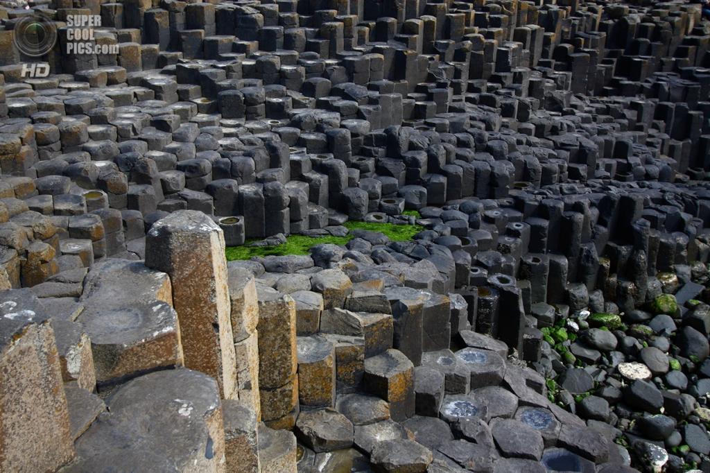 Северная Ирландия. Дорога гигантов. (Lapin Givré)