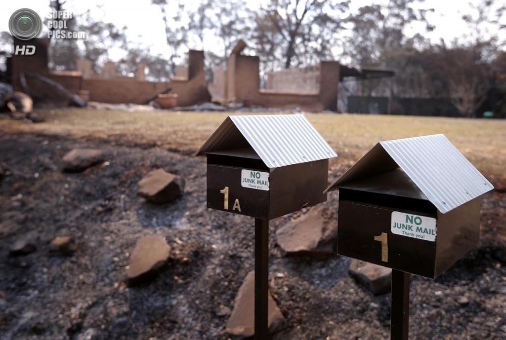 Австралия. Уинмали, Новый Южный Уэльс. 21 октября. Последствия лесного пожара. (REUTERS/David Gray)