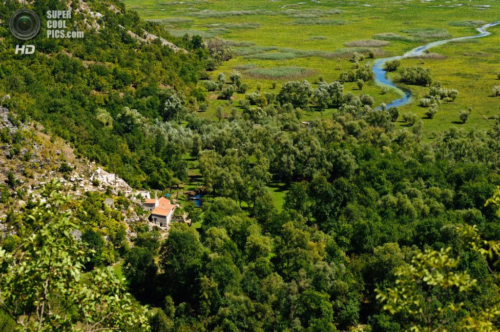 Черногория. Скадарское озеро. (Rob Hogeslag)