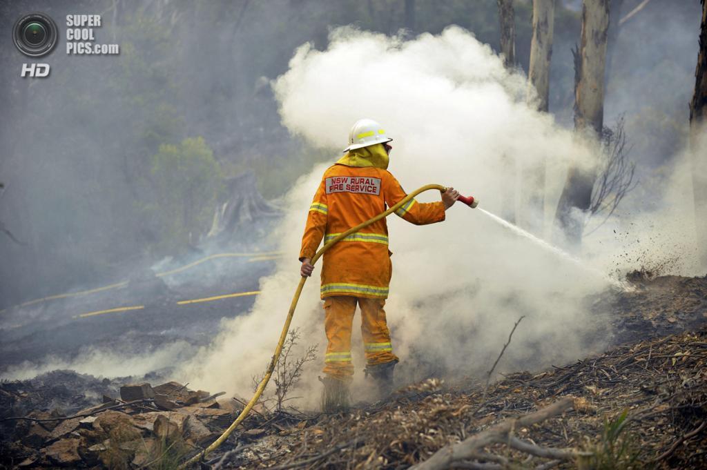 Австралия. Белл, Новый Южный Уэльс. 20 октября. Пожарные бригады и волонтёры борются с распространением огня. (AAP Image/Paul Miller)