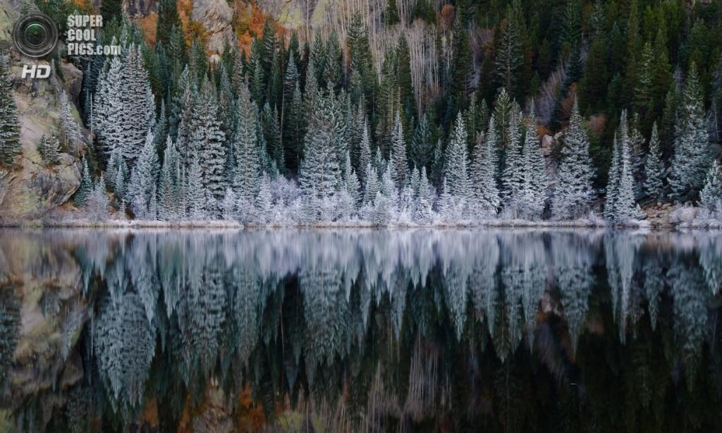 Осенние заморозки. (Robin Wilson)