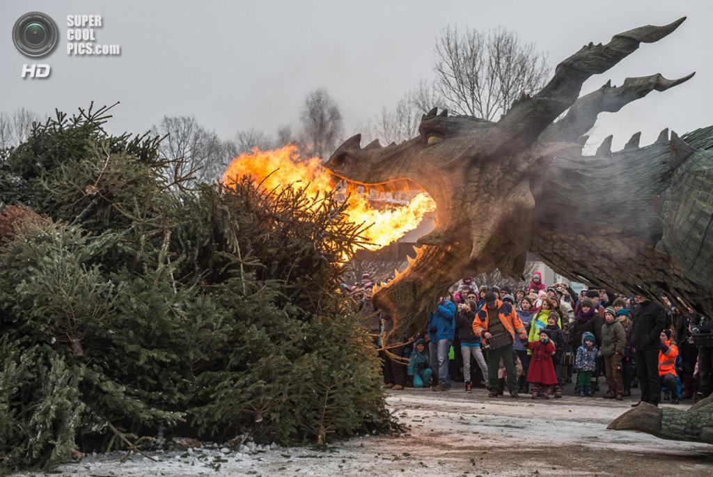 Германия. Фурт-им-Вальд, Бавария. 24 января. Роботический дракон в средневековом стиле сжигает рождественские ёлки по окончанию рождественского сезона. (AP Photo/Armin Weigel)