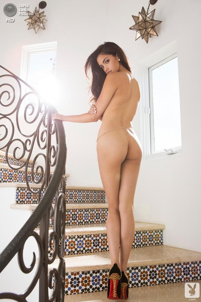 Сексуальная девушка playboy 16 фотография