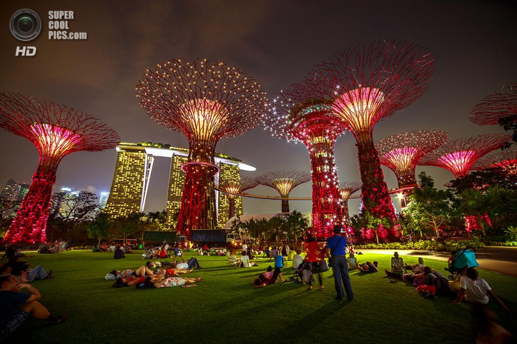 Сингапур. Парковый комплекс Gardens by the Bay. (Viet Long Hoang)