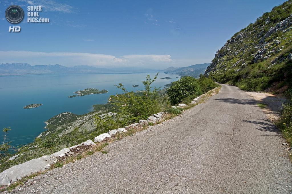 Черногория. Скадарское озеро. (Christof)