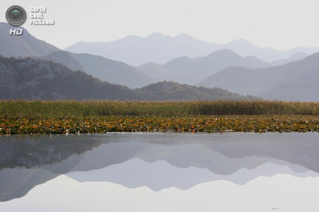 Черногория. Скадарское озеро. (Undiscovered Montenegro)