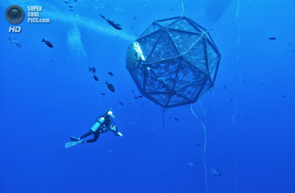 Мобильная клетка для рыбы, разработанная Lockheed Martin для решения экологических проблем. Система работает за счет интеграции спутниковой связи, каналов дистанционного зондирования данных, робототехники, управления двигателями и программного обеспечения. (PRNewsFoto/Lockheed Martin)