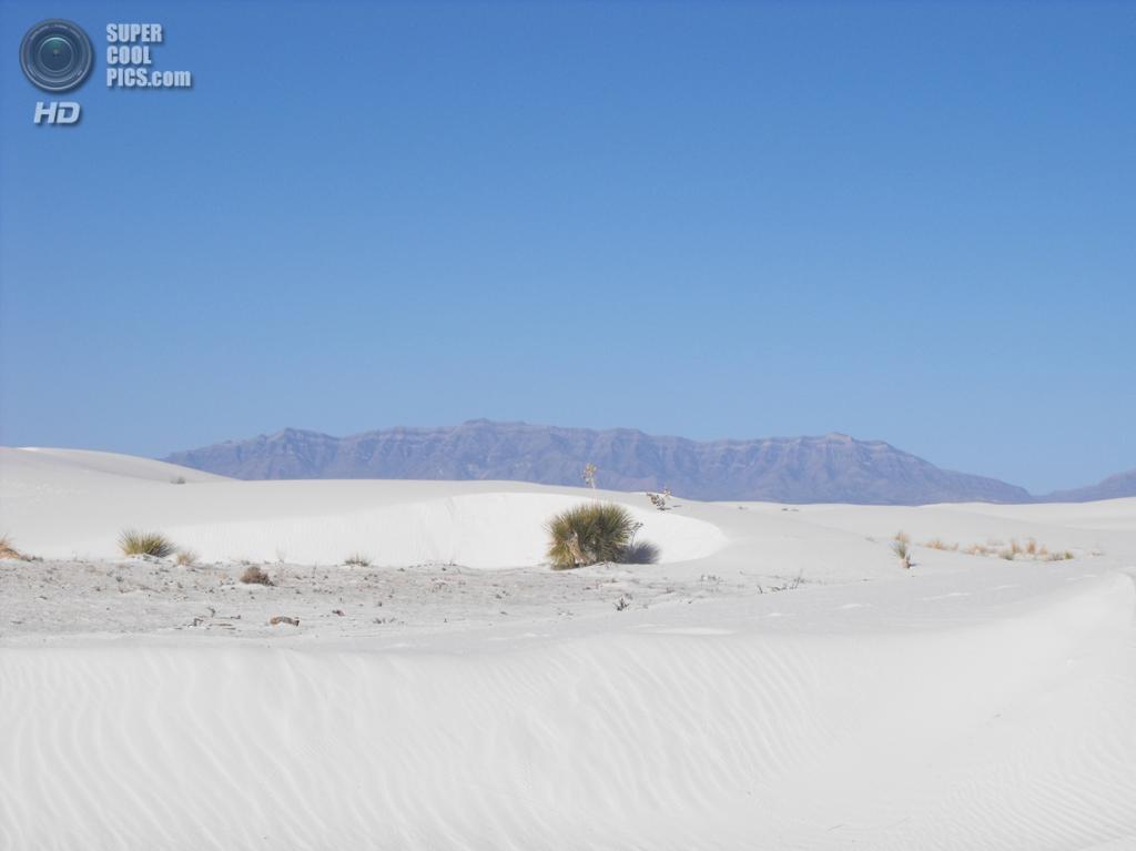 США. Нью-Мексико. Государственный заповедник Белые пески. (Dominic Labbe)