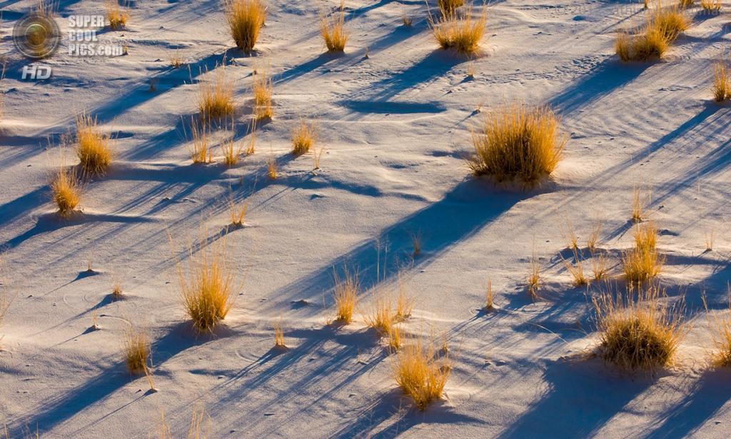 США. Нью-Мексико. Государственный заповедник Белые пески. (Sathish J)
