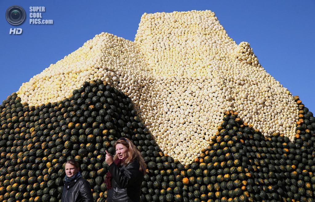 Германия. Белиц, Бранденбург. 1 октября. Тыквы, выращенные на ферме Buschmann & Winkelmann. (Sean Gallup/Getty Images)