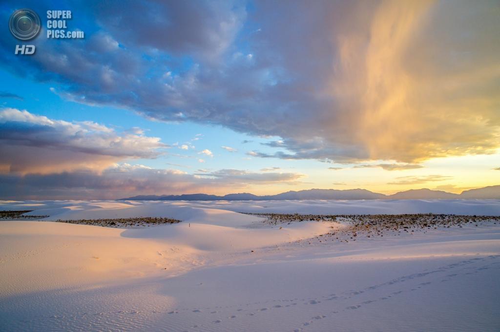 США. Нью-Мексико. Государственный заповедник Белые пески. (Denny Armstrong)