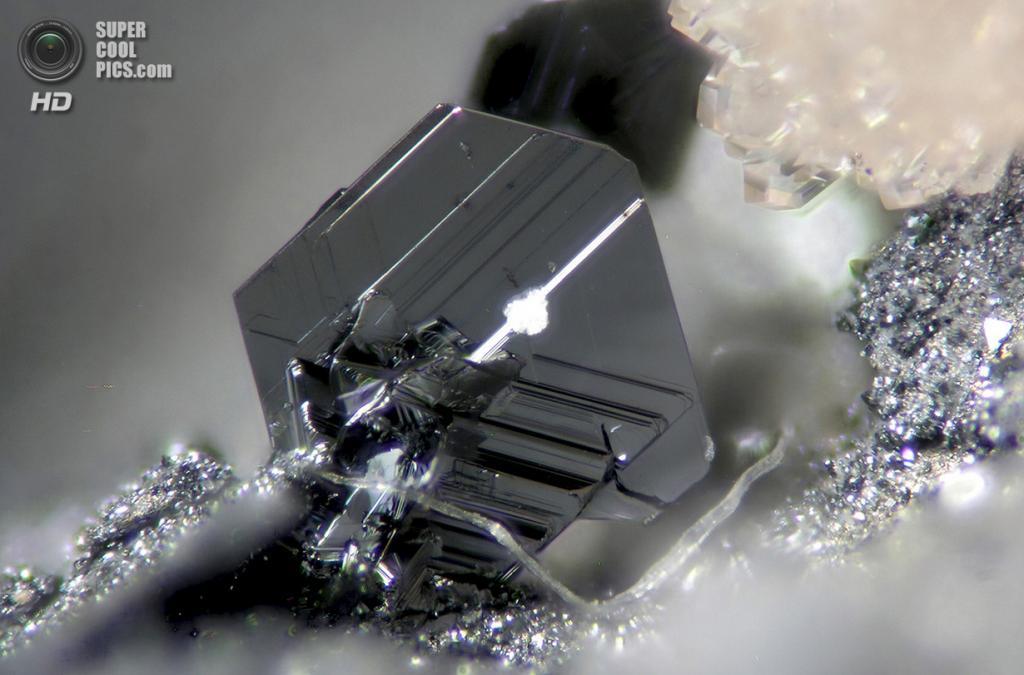 Красивые гексагональные кристаллы пирсита — минерала серебра и меди, найденного на медном руднике в Испании, 100x увеличение. (Dr. Cesar Menor Salvan)