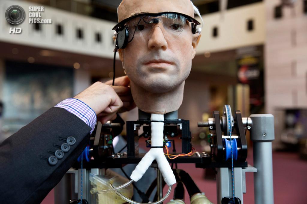 США. Вашингтон. 17 октября. Первый в мире «бионический человек» — робот, полностью сделанный из протезов конечностей и органов, — на выставке в Национальном музее авиации и космонавтики. (REUTERS/Joshua Roberts)