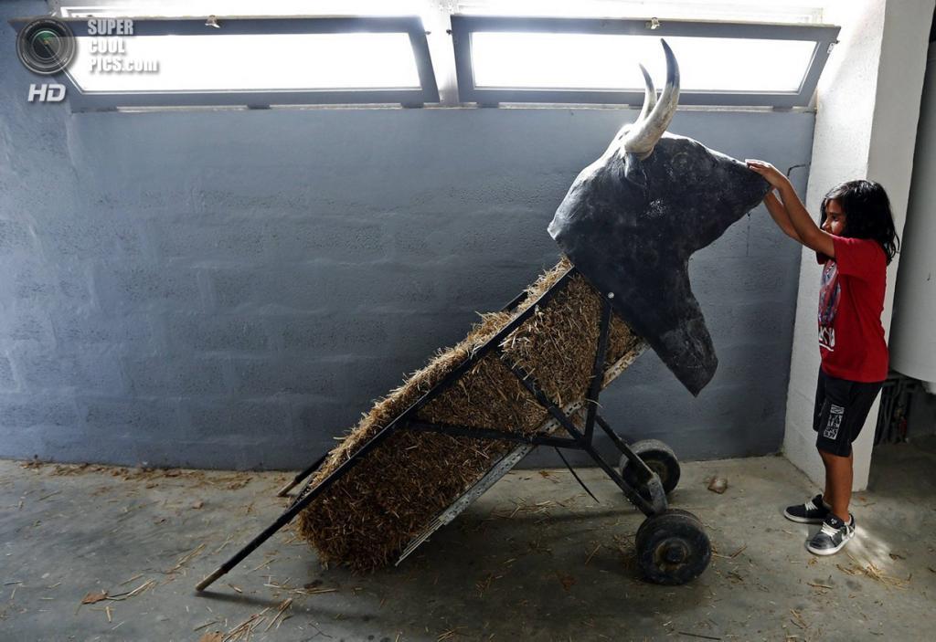 Франция. Ним, Гар. 25 сентября. 10-летний Ниньо держит муляж быка, используемый на тренировках. (REUTERS/Jean-Paul Pelissier)
